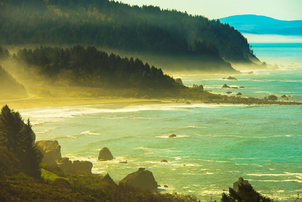 Beach City Eureka California Misty Redwood Pacific Coast